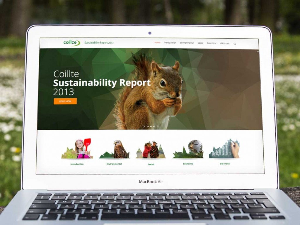 Coillte Sustustainable Report 2013 website