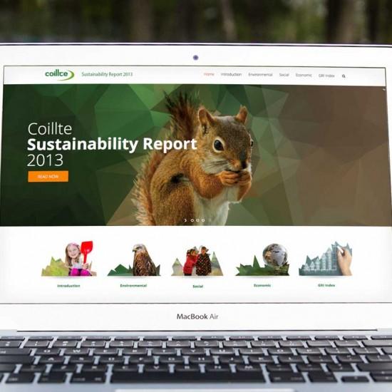 Coillte Sustustainable Report 2013 website