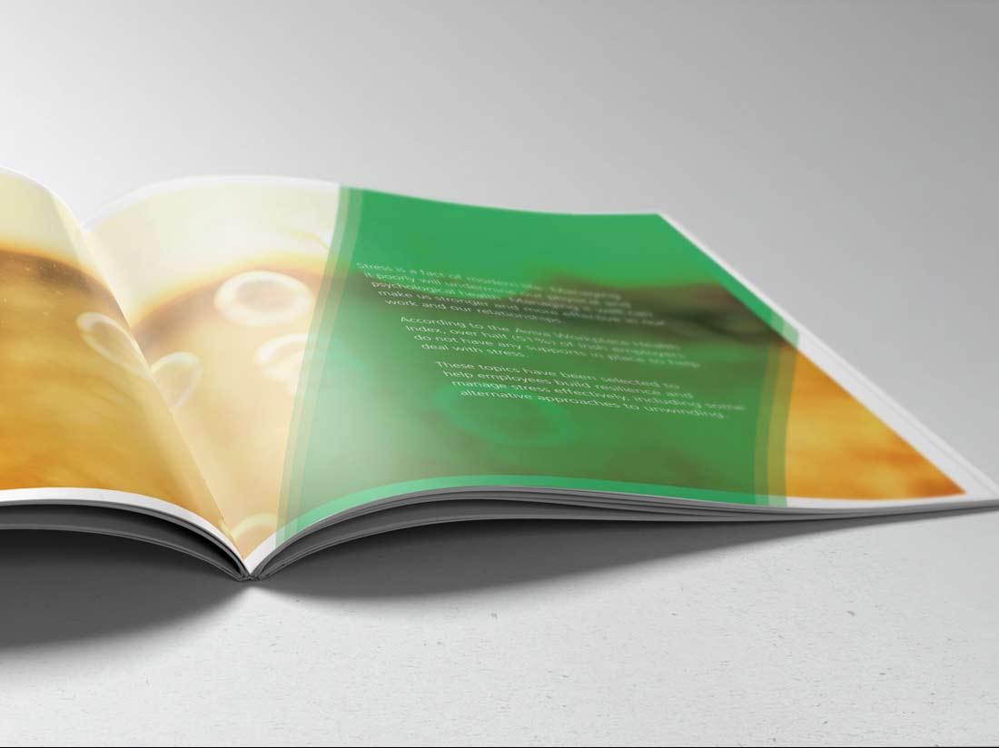 Aviva Wellness brochure