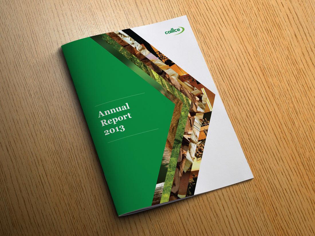 Coillte Annual Report 2013 front cover